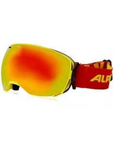 Alpina Big Horn MM Goggles/skibriller